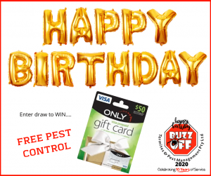 Celebrate Buzz Off Termites & Pests 10th Birthday